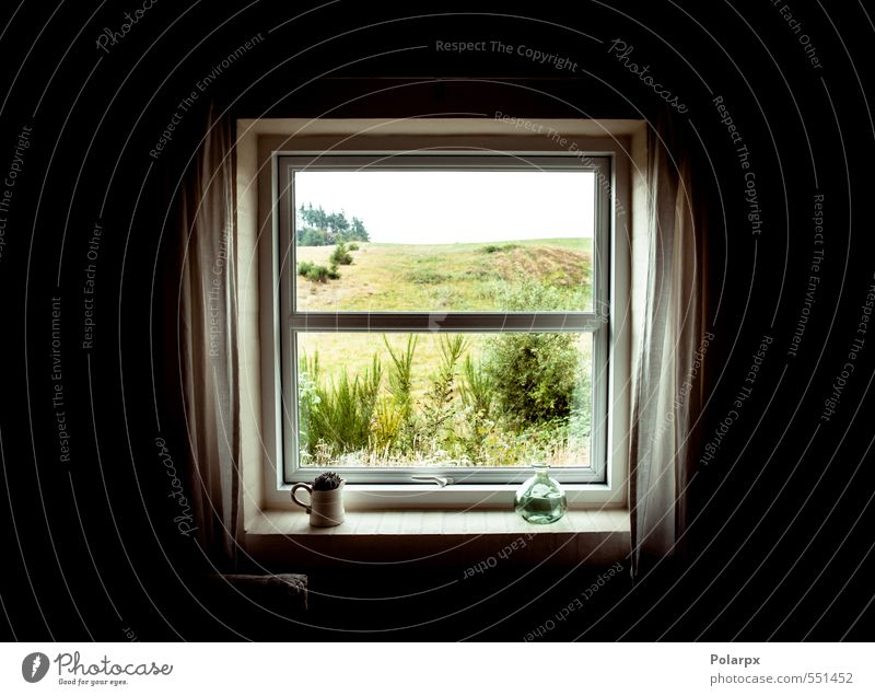 Window Summer House (Residential Structure) Environment Nature Landscape Air Clouds Horizon Weather Flower Forest Cloth Dark Fresh Bright Natural White inside