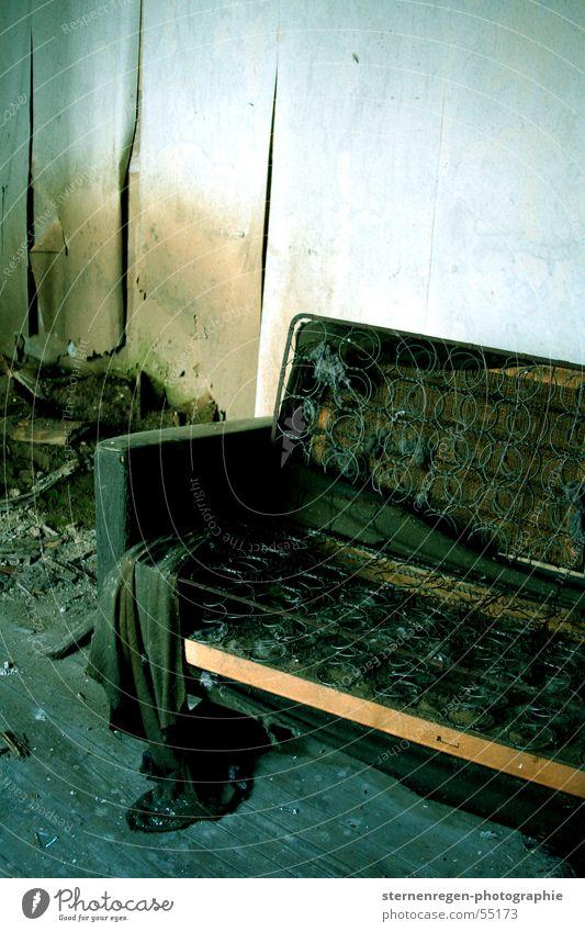 Old Dirty Sofa Decline Destruction Dust Devastated