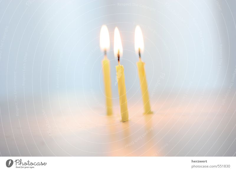 Happy Birthday Feasts & Celebrations Candle Emotions Joy Happiness Colour photo Interior shot