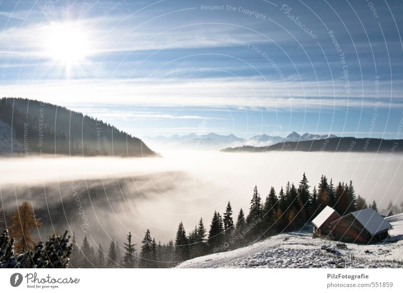 Above the fog line Hut Alpine pasture Nature Sky Sun Autumn Beautiful weather Fog Snow Meadow Forest Alps Mountain Peak Relaxation To enjoy Contentment