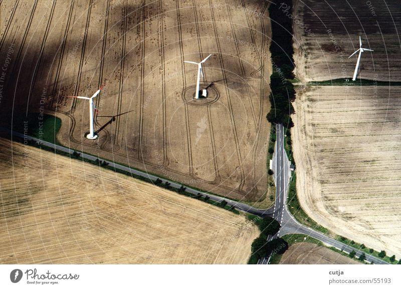 still wind Field Bird Bird's-eye view Street Mixture tidied