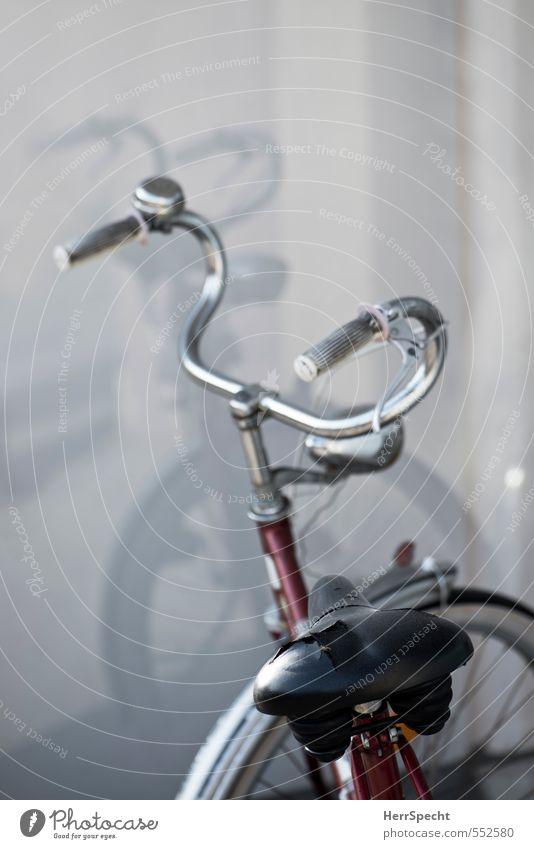 Doubled Bicycle Old Broken Gray Red Variable Bicycle saddle Rip Handlebars Shop window Colour photo Subdued colour Exterior shot Deserted Copy Space top