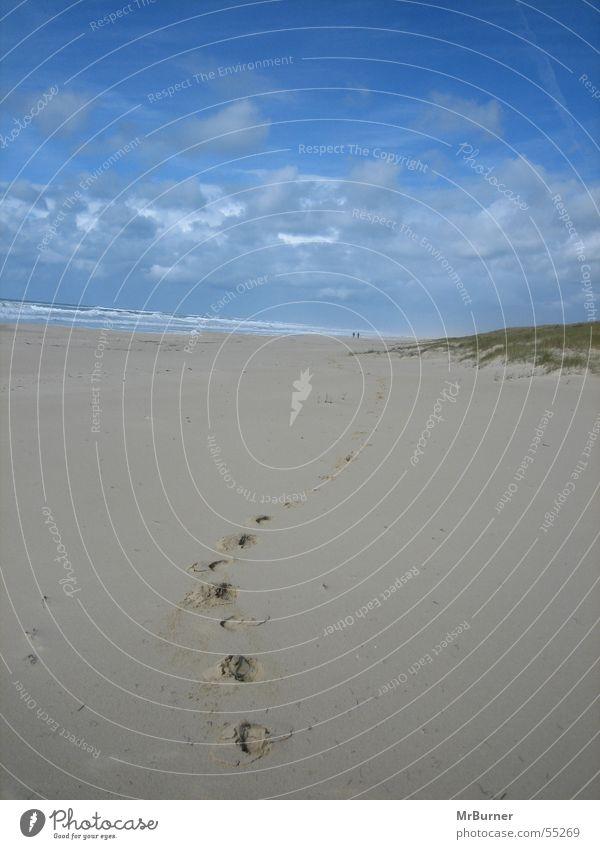 The way Ocean Beach Tracks Lanes & trails