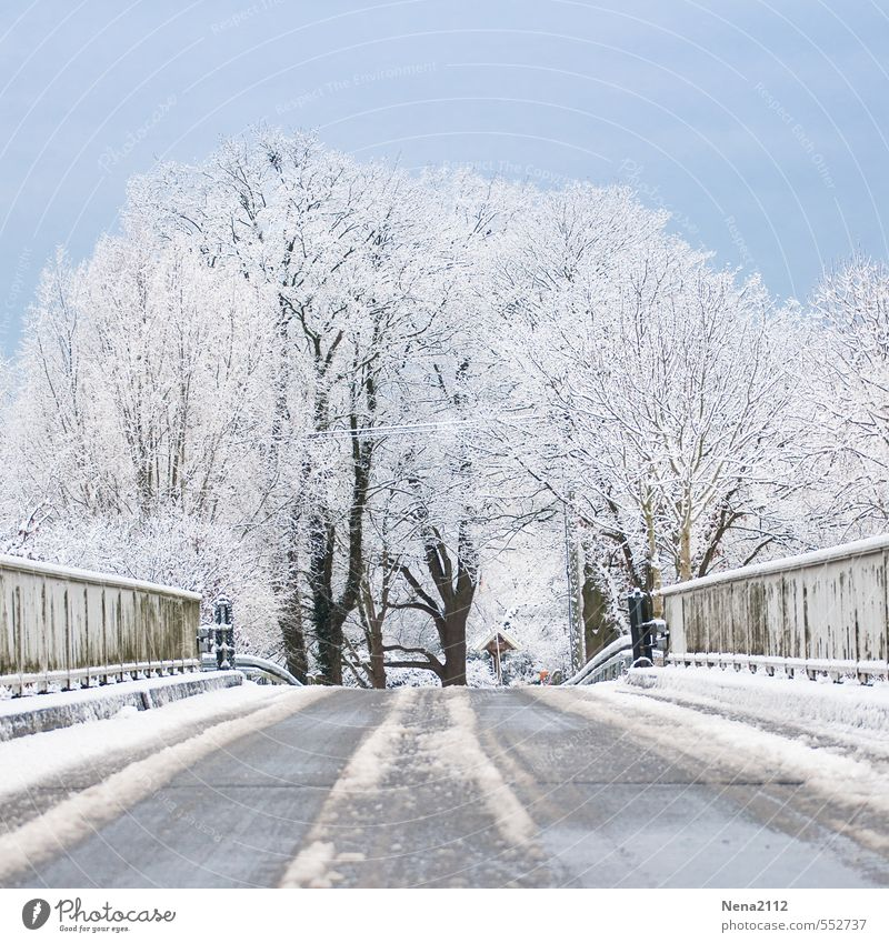 Weather | Fresh air Environment Nature Landscape Air Winter Beautiful weather Ice Frost Snow Cold Pavement Smoothness Bridge railing Tree Colour photo