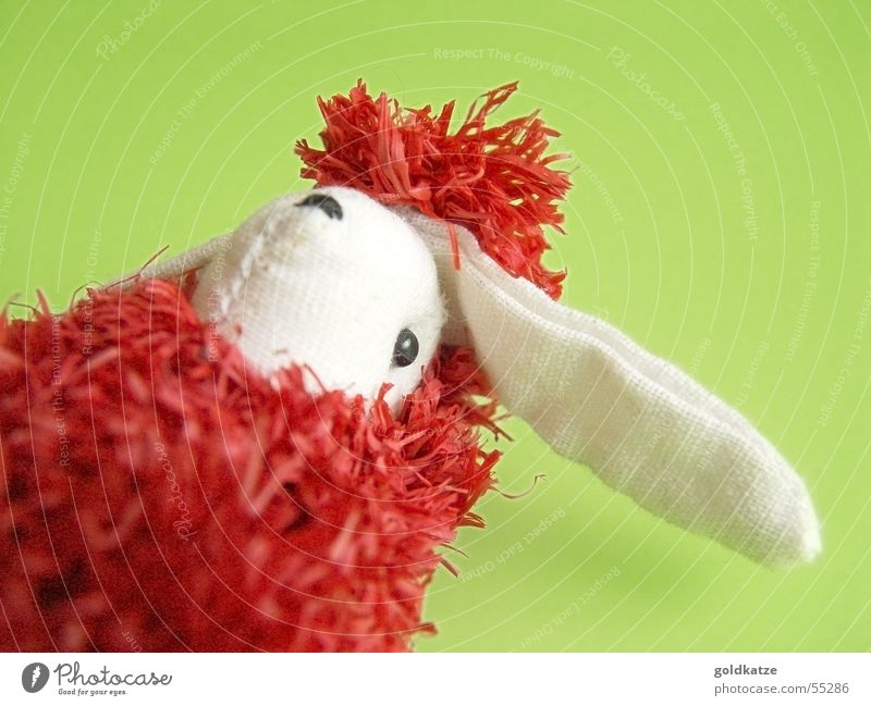 Green Red Joy Animal Playing Head Spring Funny Infancy Happiness Crazy Exceptional Decoration Ear Cute Animal face