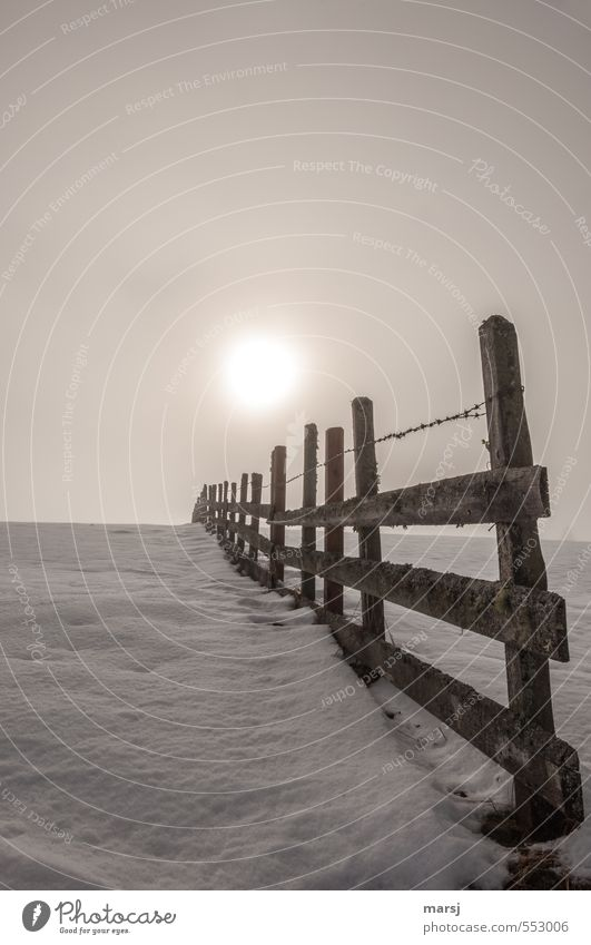 In front of or behind the fence? Sky Autumn Winter Fog Snow Fence Wooden fence Border Illuminate Cold Brown Colour photo Subdued colour Exterior shot Deserted