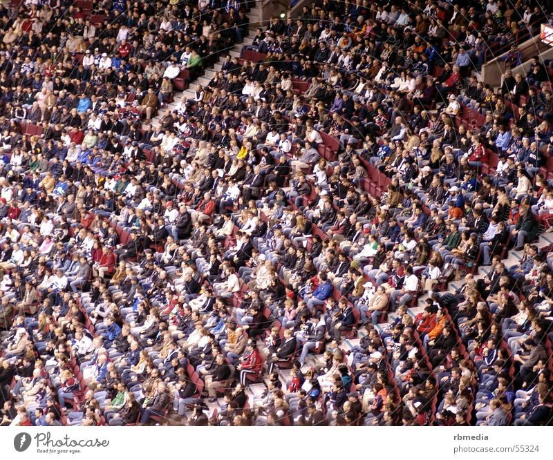 Human being Sports Sit Crowd of people Audience
