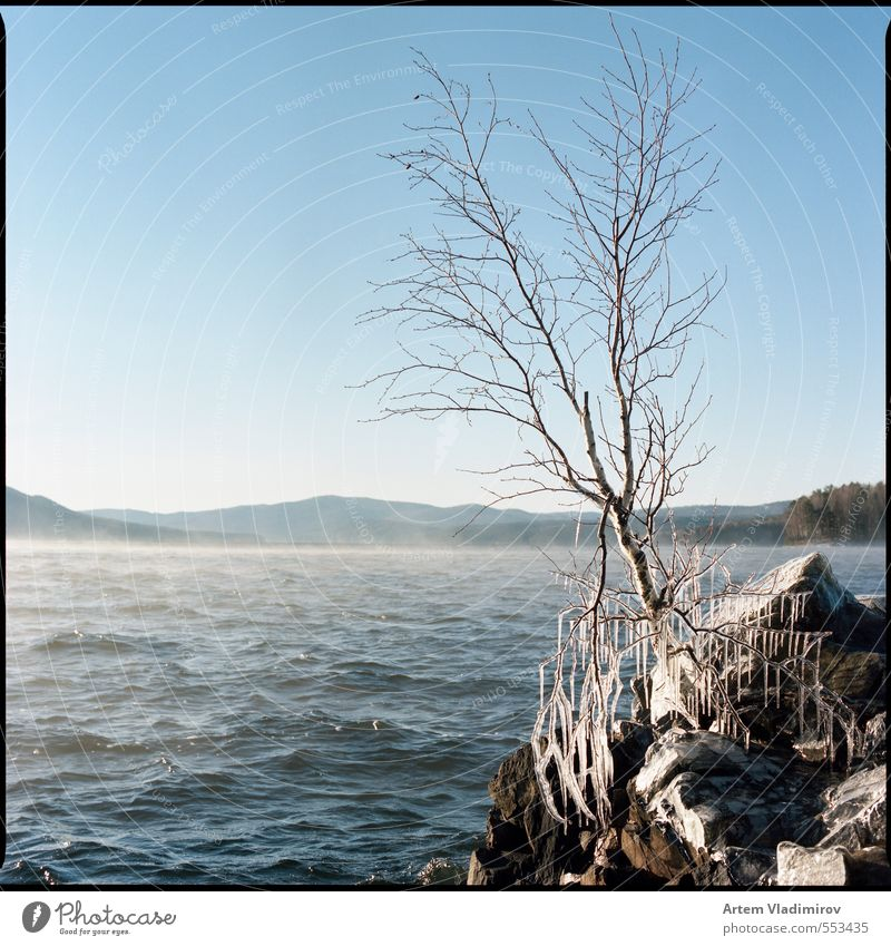 #storm2 Landscape Plant Air Water Sky Horizon Autumn Climate Wind Fog Ice Frost Tree Rock Stone Cold Blue Brown White Serene Colour 6x6 bronica sq-ai film