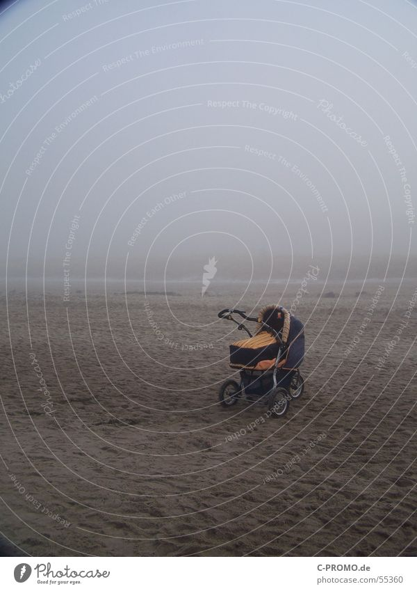 Beach Loneliness Sand Coast Baby Fear Fog Dangerous Scream Panic Exclusion Baby carriage Exposed Motherless