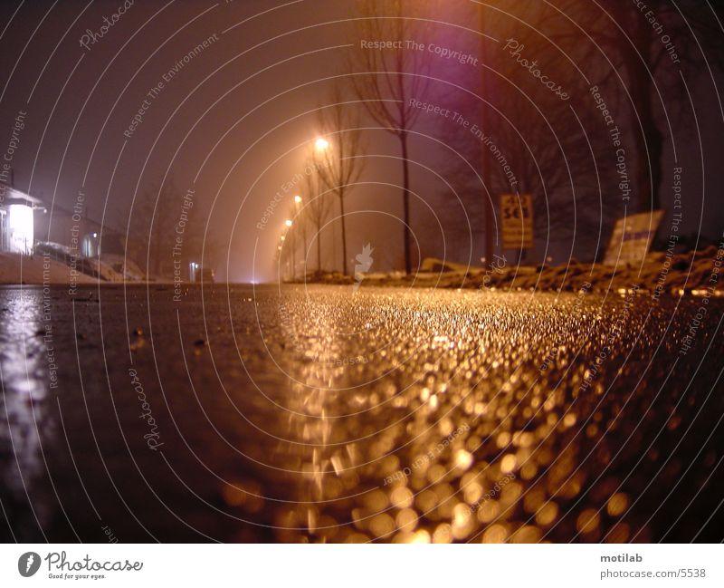 wetstreet Traffic lane Wet Night Loneliness Driving Transport Street