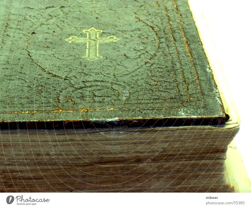 The Book of Books Bible Religion and faith Paper Holy Catholicism Protestantism Christianity Testament Back Old prostitute Crack & Rip & Tear
