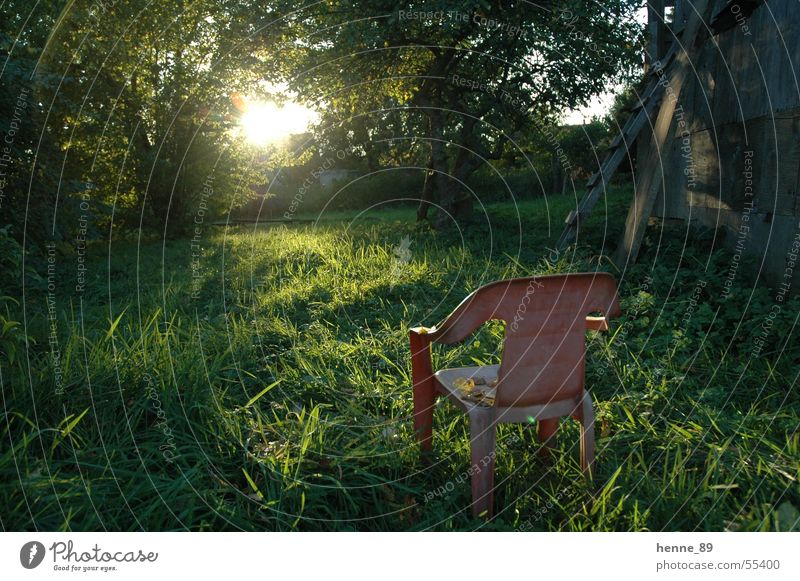 A place in the sun Sunrise Meadow Garden chair Plastic chair Light Tree Flare