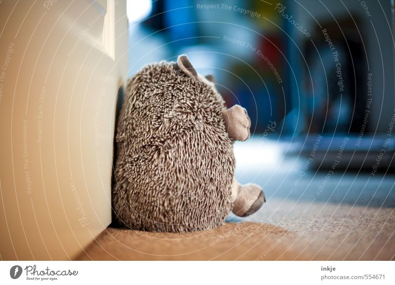 nursery Lifestyle Living or residing Flat (apartment) Children's room Door Hedgehog 1 Animal Cuddly toy doorstop Soft Emotions Safety (feeling of) Colour photo