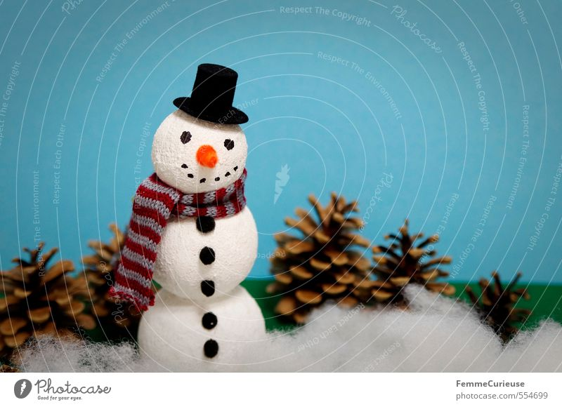 Mr Snow Nature Climate Beautiful weather Ice Frost Snowfall Leisure and hobbies Joy Handicraft Craft materials Fun with handicrafts Snowman Styrofoam