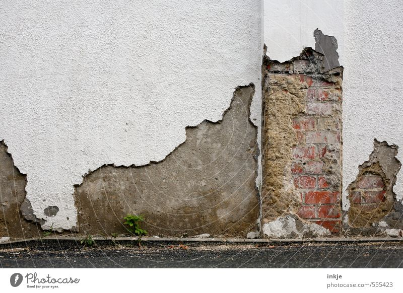 Old White Wall (building) Emotions Senior citizen Wall (barrier) Line Facade Concrete Broken Transience Change Level Derelict Decline Brick