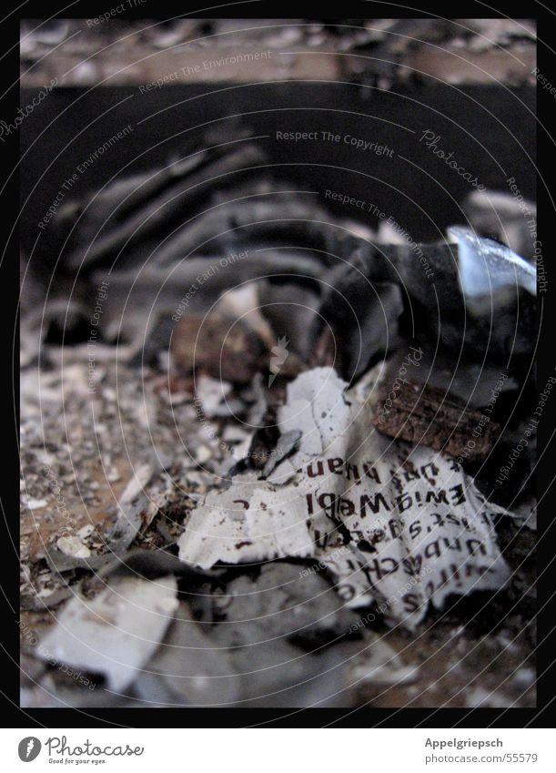 Forever? Paper Newspaper Ashes Letters (alphabet) Transience Burn Blaze
