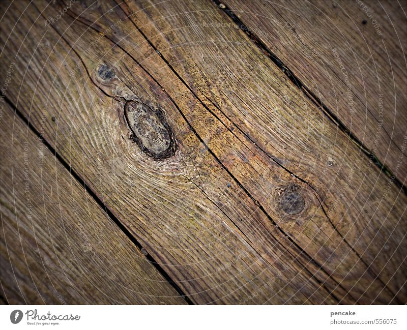 creaky Nature Wood Sustainability Naked Thrifty Attachment Floorboards Wooden floor Wooden board Wood grain Puristic Creak Wood work Crack & Rip & Tear