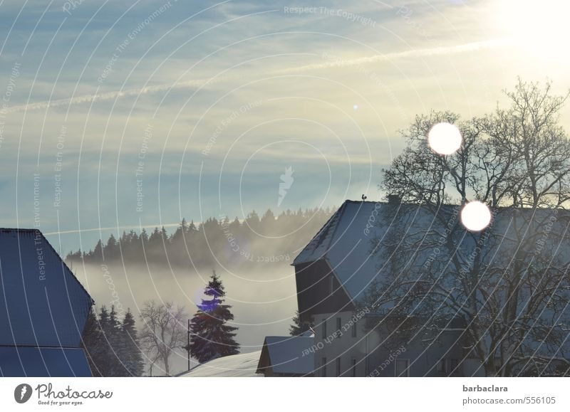 The light leads to the stable Landscape Sky Sunlight Winter Fog Snow Tree Forest Black Forest Black Forest house House (Residential Structure) Agriculture
