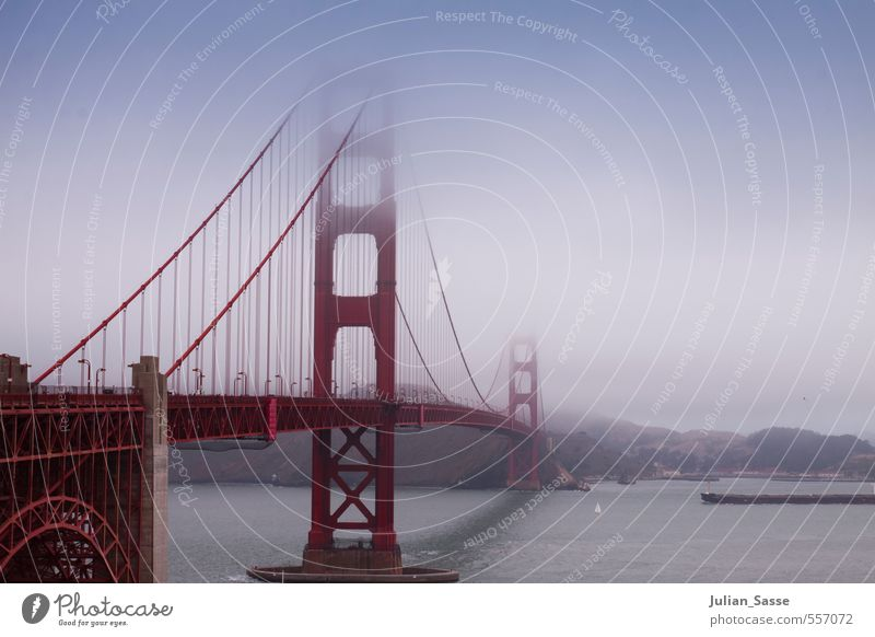 If you're going to San Francisco... Lifestyle Clouds Summer Fog Hill Mountain River bank USA Americas Town Port City Outskirts Populated Bridge