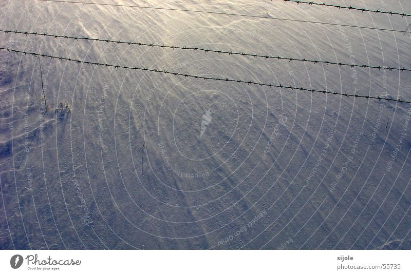 White Sun Blue Winter Cold Snow Wind Floor covering Fence Wire Barbed wire Sanddrift Snowdrift