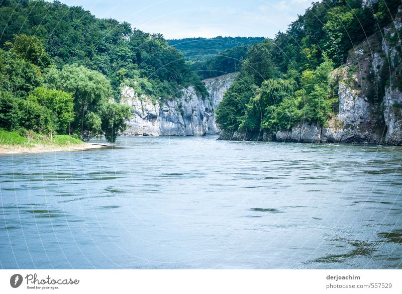 Danube -breakthrough: The Danube flows through a narrowness. Right and left high rocks with trees. Environment Landscape Water Clouds Summer Beautiful weather