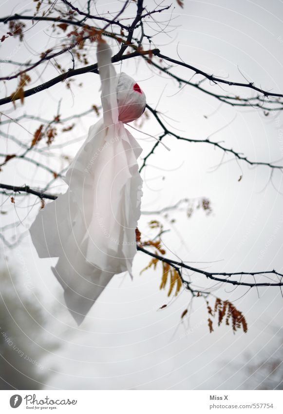 White Tree Winter Autumn Flying Fear Decoration Branch Creepy Twig Ghosts & Spectres  Hang Hallowe'en Spooky Ghost forest
