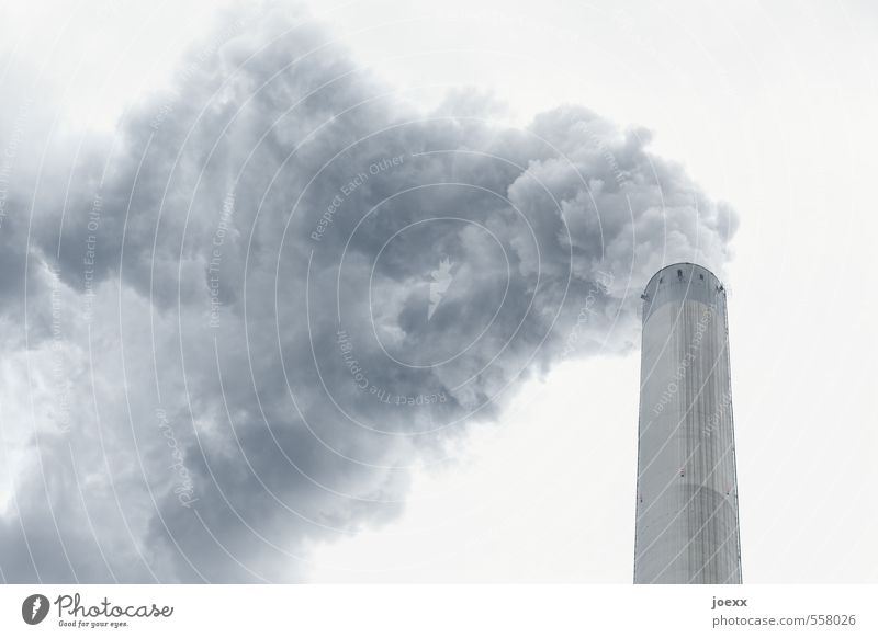 Smoke Poisoning I Air Sky Clouds Climate Bad weather Smoking Creepy Hideous Cold Above Town Blue Gray White Fear Bizarre Apocalyptic sentiment Energy