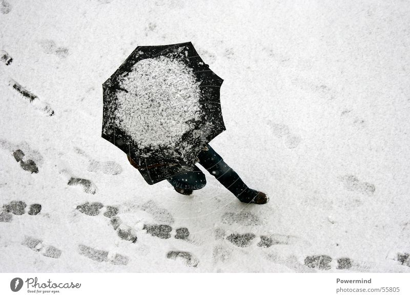 Woman White Winter Black Cold Snow Above Ice Legs Going Walking Electricity To go for a walk Lie Tracks Umbrella