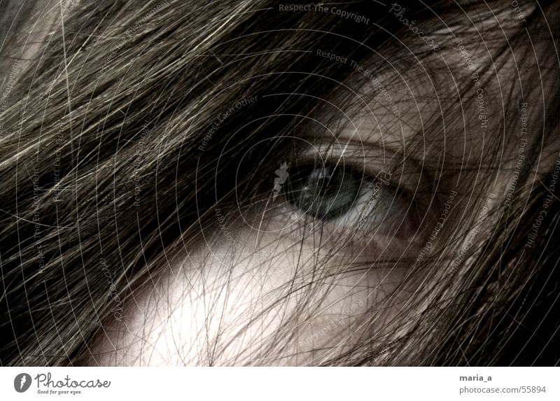 tousled Disheveled Insubstantial Grief Eerie Search Longing Loneliness Hang up Vista Woman Human being Girl Eyelash Mysterious Hair and hairstyles Eyes Sadness