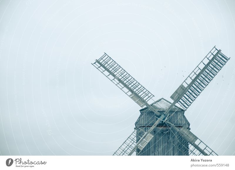 Blue Loneliness House (Residential Structure) Cold Building Gray Wood Brown Stand Tourist Attraction Sharp-edged Stagnating Endurance Windmill Windmill vane