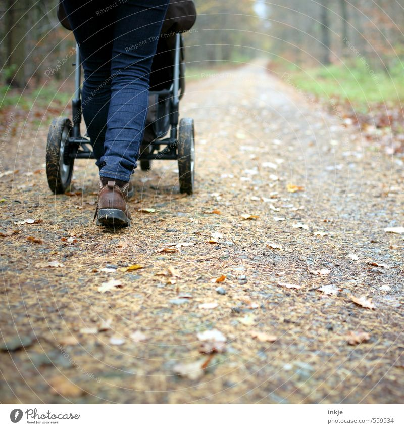 autumn walk Lifestyle Leisure and hobbies Trip Forest walk Woman Adults Mother Abdomen 1 Human being 30 - 45 years Environment Nature Autumn Winter Leaf