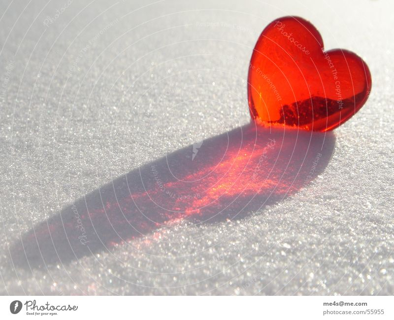 loves in the snow Sugar Confectioner`s sugar Winter Cold Red Purple White Pure Glimmer Exterior shot Symbols and metaphors Kitsch Relationship Round Longing