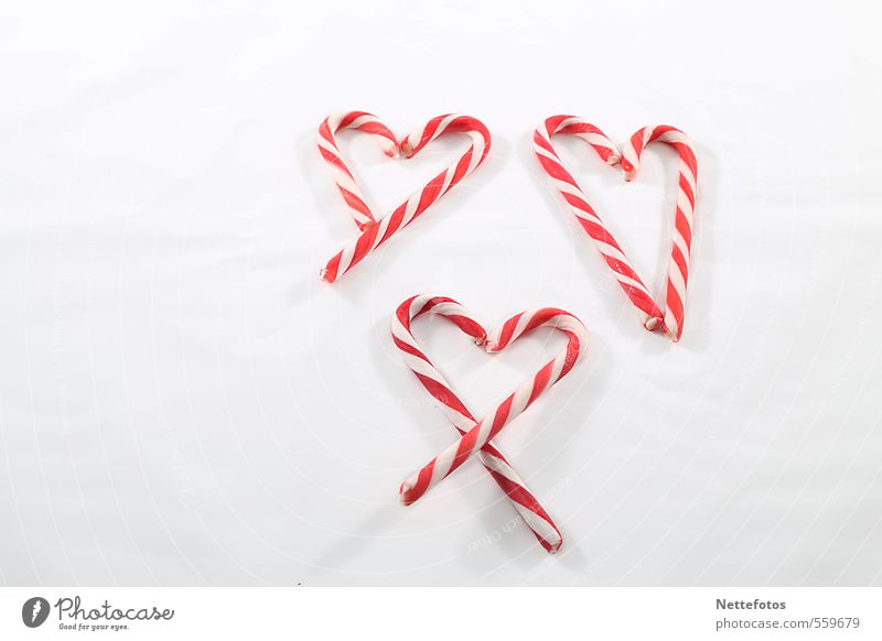 sugar hearts Food Candy Valentine's Day Mother's Day Christmas & Advent Heart Red White Emotions Happy Love Infatuation Colour photo Studio shot Copy Space left