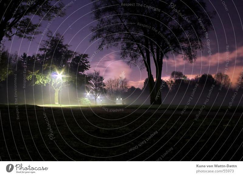 NightVision, at night in the Bottrop Volkspark Long exposure Night shot Clouds Park Dark Tree Sky Star (Symbol) orion