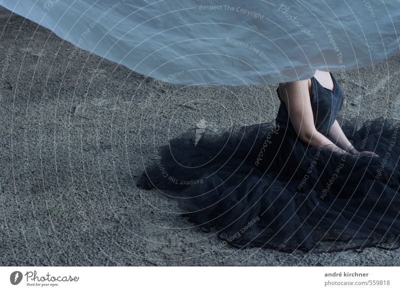 sand waves Yoga Dance Feminine Young woman Youth (Young adults) Body Chest Arm 1 Human being 18 - 30 years Adults Dress Tulle Breathe Kneel Esthetic Exceptional