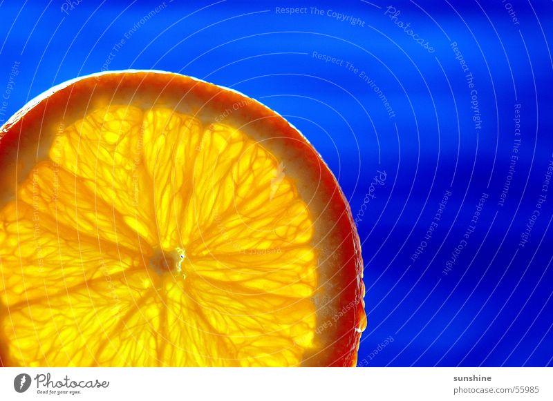 blue orange Citrus fruits Summer Cocktail Orange Blue Fruit