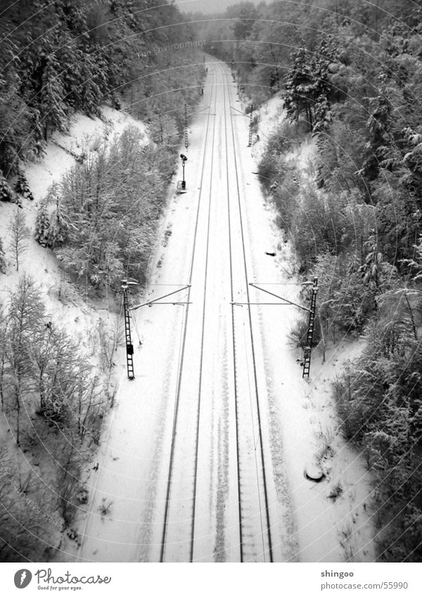 winter track bed Winter Snow Environment Nature Landscape Beautiful weather Ice Frost Forest Traffic infrastructure Passenger traffic Public transit Logistics