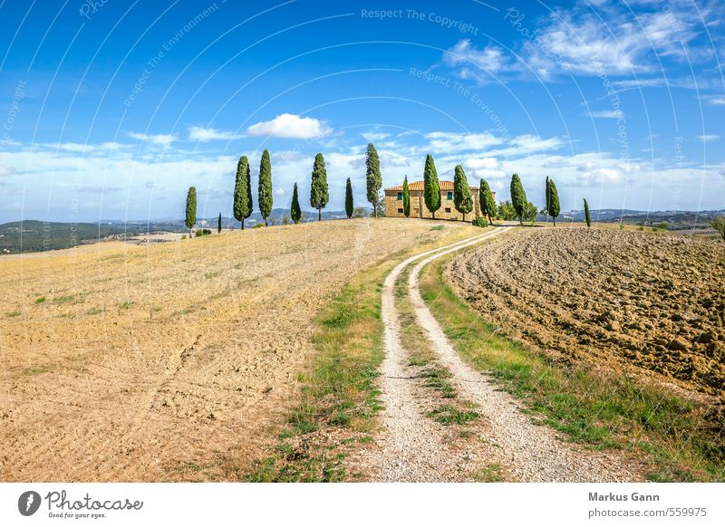 Tuscany Vacation & Travel Tourism Summer vacation House (Residential Structure) Environment Nature Landscape Sky Tree To enjoy Blue Brown Green Italy Pienza