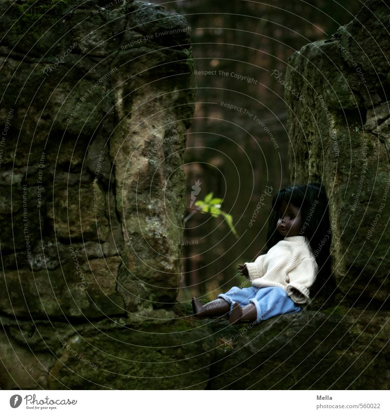 Nature Leaf Forest Dark Environment Wall (building) Emotions Wall (barrier) Small Stone Time Gloomy Infancy Sit Transience Mysterious