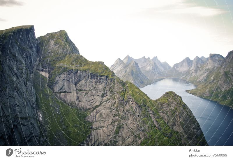 mountains Vacation & Travel Trip Adventure Far-off places Freedom Nature Landscape Mountain Peak Fjord Lake Esthetic Authentic Gigantic Above Strong Wild Blue