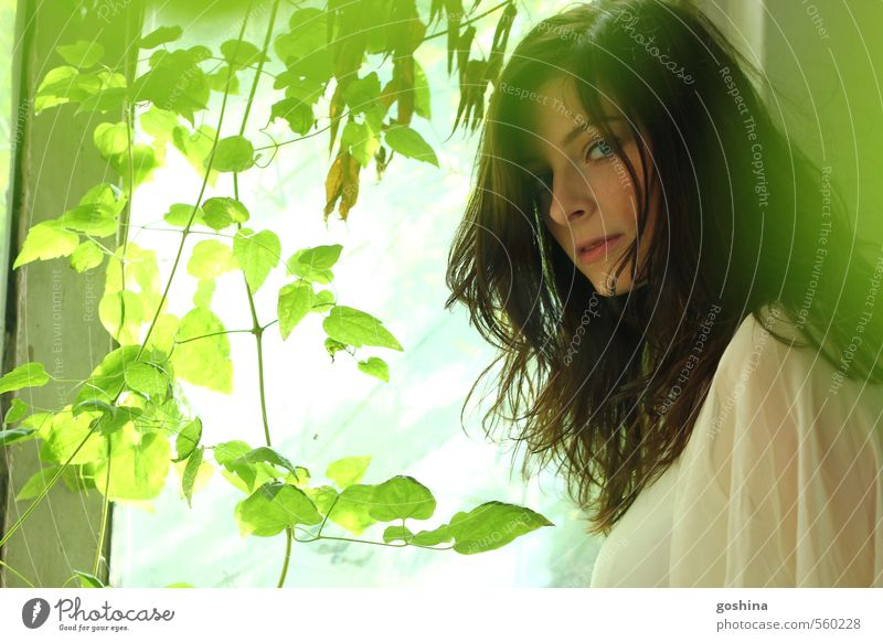 Woman Green White Leaf Mysterious Search Long-haired Delightful Ask Black-haired Enchanting Attractive Foliage plant Marvel Mystery Snow White