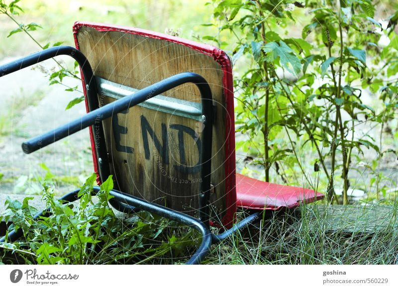 This is the End Nature Plant Grass Bushes Meadow Decline Past Transience Chair Death Red Green Foliage plant life and death Wood Morbid Colour photo