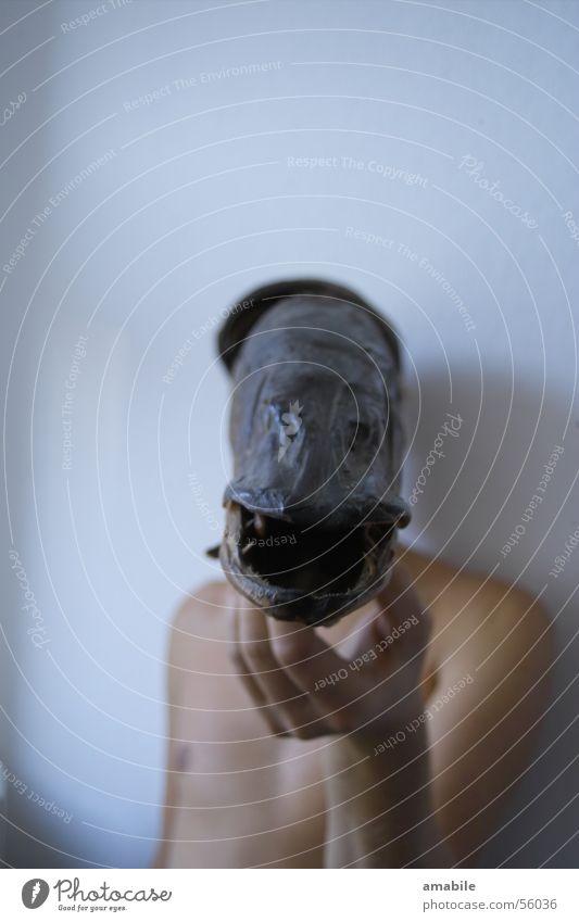 angler's dream Dream Fishing (Angle) Art Crazy Hand Head Mask