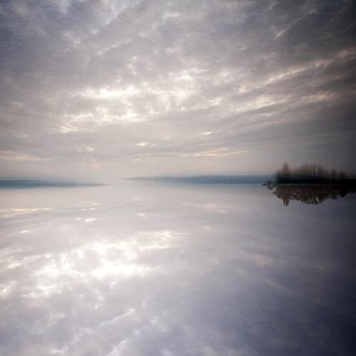 Sky Nature Water Plant Landscape Clouds Far-off places Environment Autumn Style Lake Horizon Moody Idyll Trip Elements
