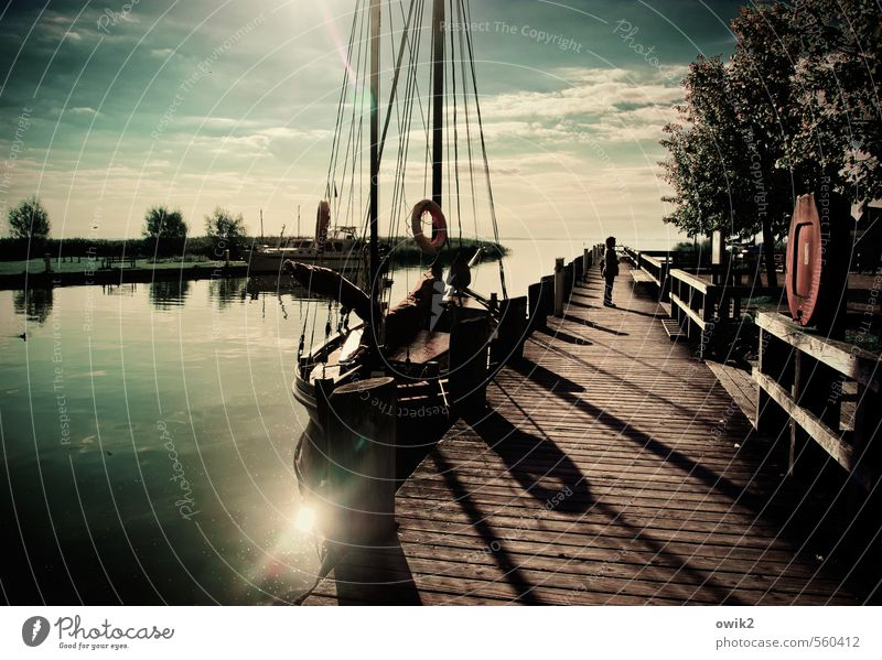 Ahrenshoop Vacation & Travel Tourism Woman Adults 1 Human being Water Sky Clouds Horizon Tree Bushes Fishing village Populated Boating trip Sailboat Jetty Wood