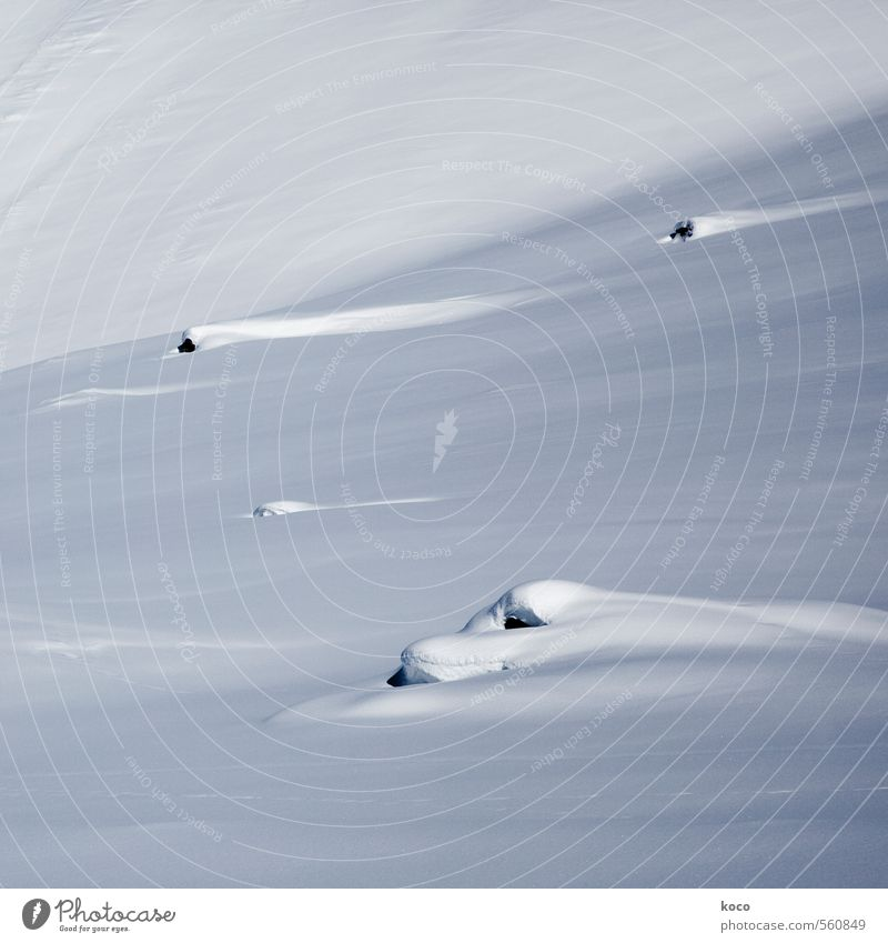 in the snow. Environment Nature Landscape Earth Snow Mountain Line Stripe Cold Blue Black White Loneliness Pure Snowcapped peak Colour photo Subdued colour