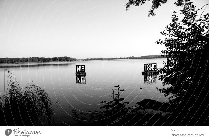 Einstein Municipality of Schwielowsee Caputh Lake Text Buoy Calm Body of water Black & white photo Water einstein Coast Signs and labeling Nature Clarity