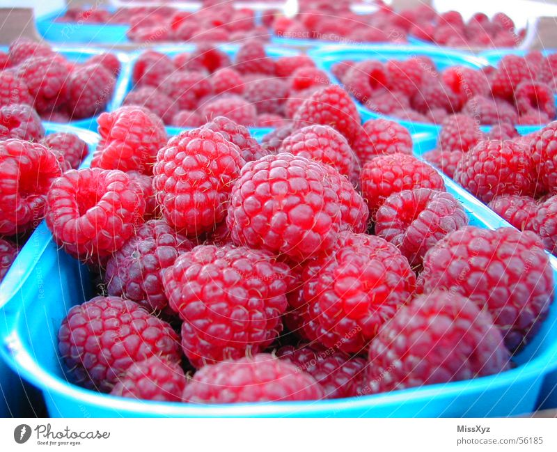 raspberries Raspberry Delicious Sweet Fresh Pink Red Nutrition Dessert Berries Fruit Food Nature Macro (Extreme close-up)