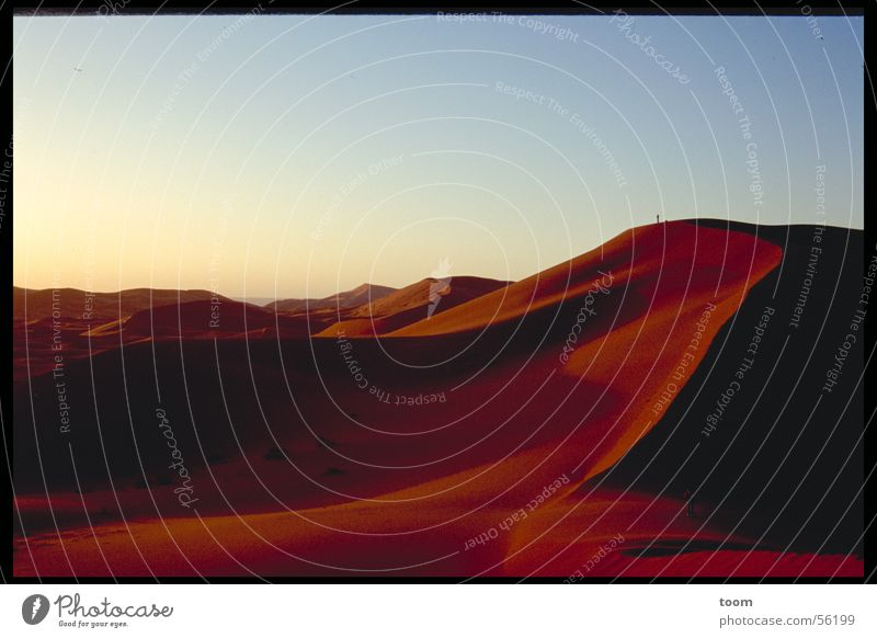Sahara Sunrise Desert Beach dune Sand