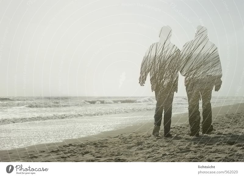 Human being Sky Nature Ocean Relaxation Landscape Beach Adults Life Senior citizen Coast Healthy Going Couple Together Waves